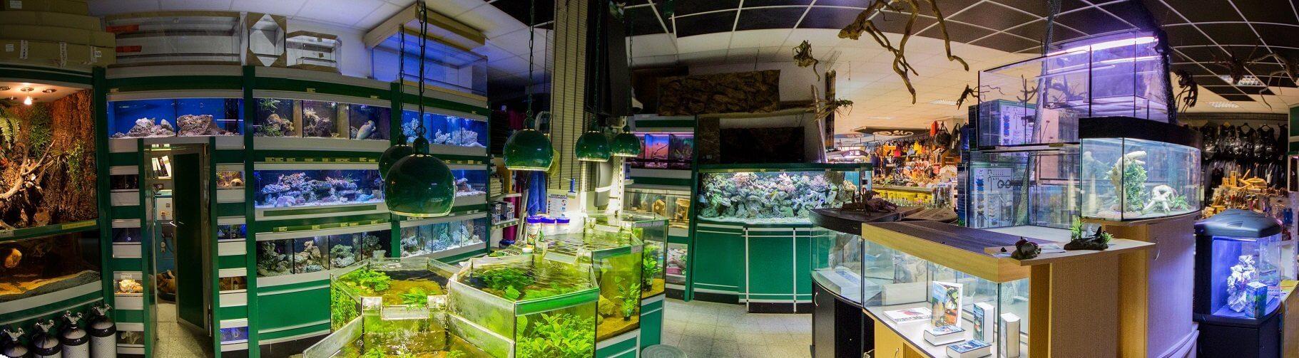 Blue-Aqua-Zoo-Aquaristik-Terraristik-Pflazen